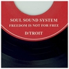 Couverture de l'album Soul Sound System B/W Freedom Is Not for Free