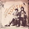 Couverture de l'album Squandering Youth