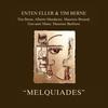 Couverture de l'album Melquiades
