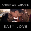 Couverture de l'album Easy Love - Single