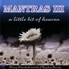 Cover of the album Mantras III