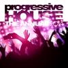 Cover of the album Progressive House the Annual 2014