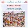 Cover of the album Carmina Burana