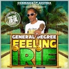 Cover of the album Feeling Irie - Single