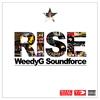 Couverture de l'album Rise