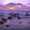 Couverture de l'album Antigravitation
