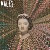 Cover of the album Run Run Run/MalesMalesMales
