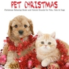 Cover of the album Pet Christmas (Christmas Relaxing Music and Nature Sounds for Pets, Cats & Dogs)