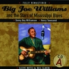 Couverture de l'album Big Joe Williams and the Stars of Mississippi Blues