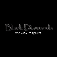 Cover of the track The .357 Magnum