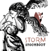 Couverture de l'album Storm
