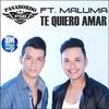 Couverture de l'album Te Quiero Amar (Remix) [feat. Maluma] - Single