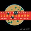 Couverture de l'album Lebensraum - Single