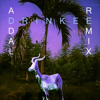 Cover of the track Drinkee (Addal Remix) - Single
