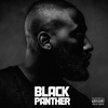 Cover of the album Black Panther