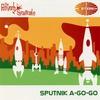 Couverture de l'album Sputnik A-Go-Go