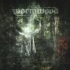 Couverture de l'album Ghostlands - Wounds From A bleeding Earth