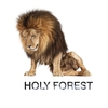 Cover of the album Holy Forest