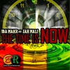 Cover of the album The Time Is Now (feat. Jah Mali) - Single