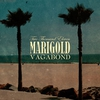 Cover of the album Vagabond