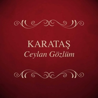 Cover of the track Ceylan Gözlüm