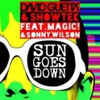 Cover of the track Sun Goes Down