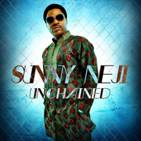 Cover of the track Unchained