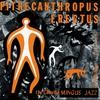 Couverture de l'album Pithecanthropus Erectus