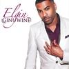 Couverture de l'album Elgin