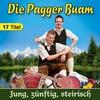 Cover of the album Jung, zünftig, steirisch