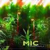 Cover of the album Timenvu