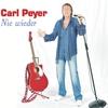 Cover of the album Nie wieder - Single