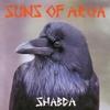 Cover of the album Shabda