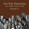 Cover of the album Doo-Wop Essentials Volume 9