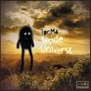 Couverture de l'album Inside Universe