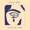 Couverture de l'album Peace or Love