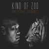 Couverture de l'album Kind of Zoo