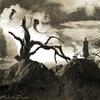 Couverture de l'album Tales and Dreams