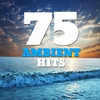 Cover of the album 75 Ambient Hits (Smooth Ambient New Age Space Sound Classics)