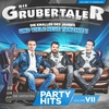 Cover of the album Die größten Partyhits, Vol. VII