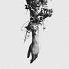 Couverture de l'album The Flowers of Romance