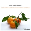 Couverture de l'album Aroma Deep Tech, Vol. 1 (25 Flavors With a Touch of Fruit and Combined With Deep and Tech House)