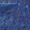 Couverture de l'album Cymatic Scan