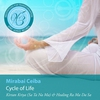 Couverture de l'album Meditations for Transformation: Cycle of Life