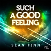 Couverture de l'album Such a Good Feeling (Remixes)