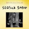Couverture de l'album Introducing Seasick Steve