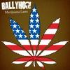 Couverture du titre Marijuana Laws