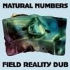 Couverture de l'album Field Reality Dub