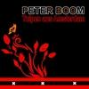 Cover of the album Tulpen aus Amsterdam - Single