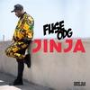 Couverture de l'album Jinja - Single